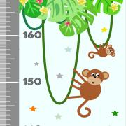 Jungle vert toise i